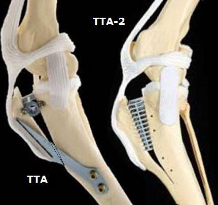 TTA и TTA-2